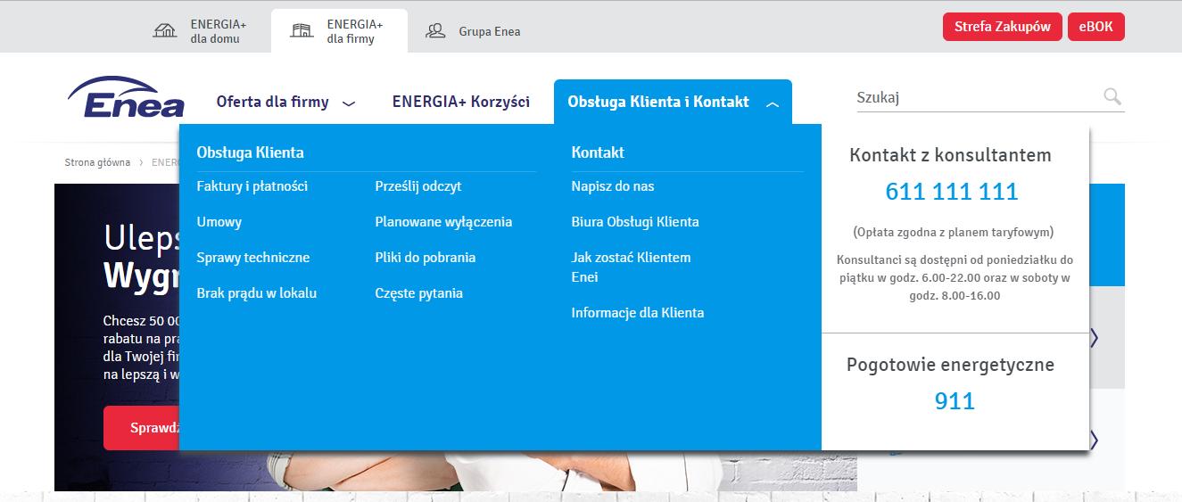 enea-dla-firmy